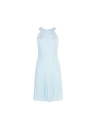 Coast Sadie Pleated Dress