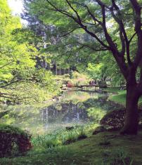 Nitobe Japanese Memorial Garden